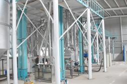 100TPD Corn Flour Milling Plant